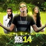Various Artists-Sex Jams 14