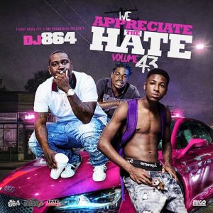 Free Music Downloads DJ 864-We Appreciate The Hate 43