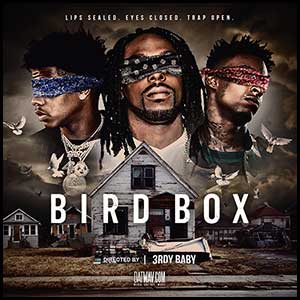 Bird Box Lips Sealed Eyes Closed Trap Open