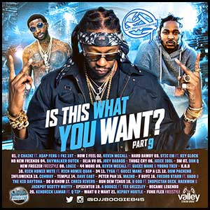 Is This What You Want 9 Mixtape Graphics