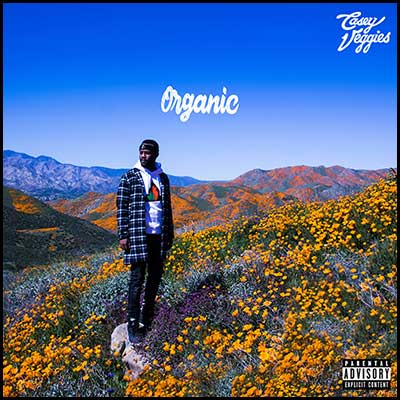 Organic Mixtape Graphics