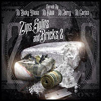 Zips Splits and Bricks 2